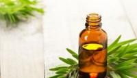 Çay Ağacı Yağı Nasıl Kullanılır? Faydaları